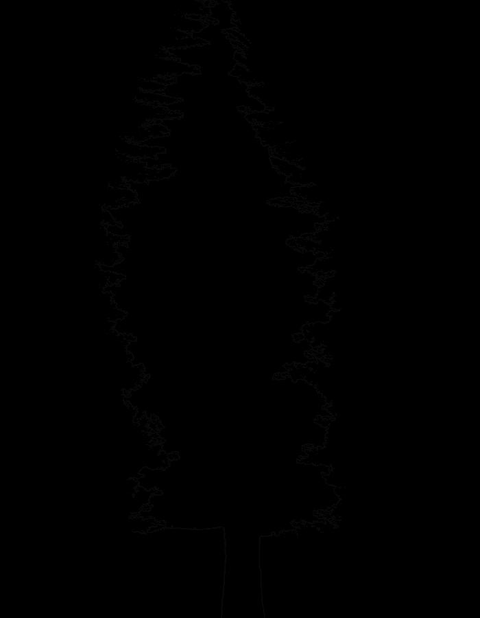 sequoia de vals les bains